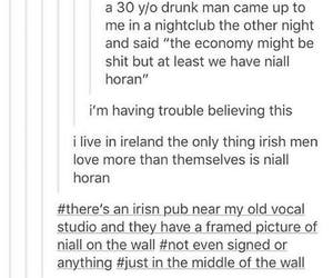 funny, tumblr, and niall horan image