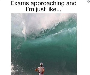 lol, exams, and finals image