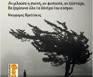 greek, quotes, and silence image