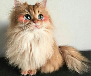 art, cat, and cute image