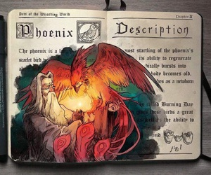harry potter, art, and phoenix image