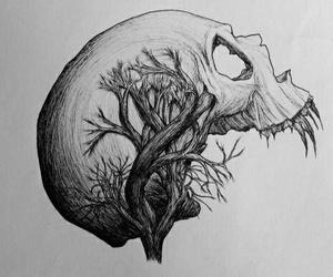 skull, art, and draw image