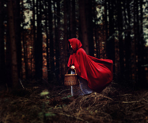 little red riding hood, fairytale, and forest image