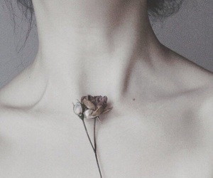 beautiful, flower, and human body image