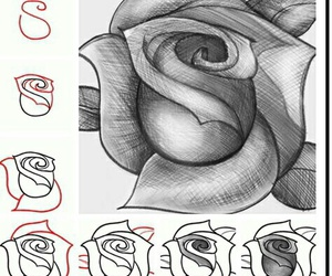 rose, drawing, and diy image