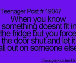 funny, fridge, and lol image