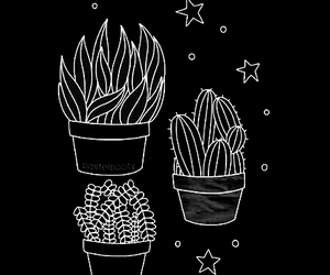 plants, wallpaper, and stars image