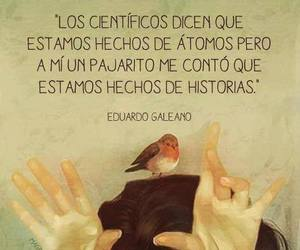 history, frases, and bird image