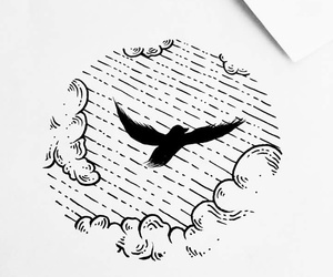 birds, draw, and fly image