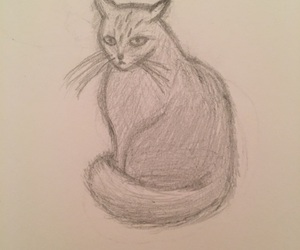 cat and sketch image