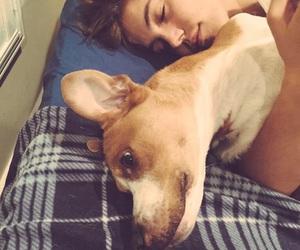 matthew espinosa, dog, and magcon image