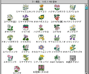 flowers, computer, and icon image