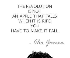 Che Guevara, quotes, and revolutiobn image
