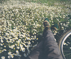 adventure, person, and flowers image