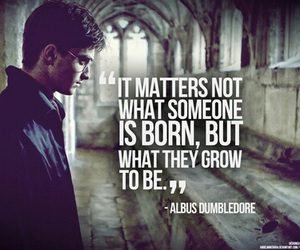 harry potter, quotes, and albus dumbledore image