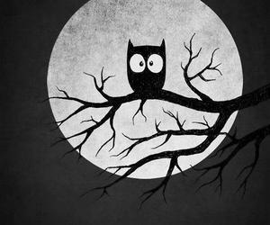 black and white, perfect, and favowl image