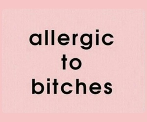 allergic and bitches image