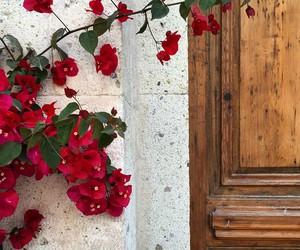 alacati, brown, and door image