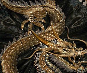 dragon, gold, and theme image