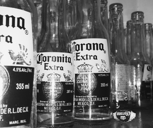 beer, chill, and corona image