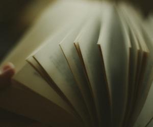 book, livro, and coffee image