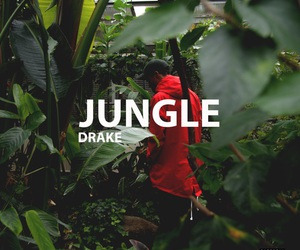 Drake, jungle, and theme image