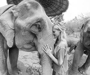 elephant and girl image