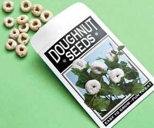 doughnut, seeds, and donuts image