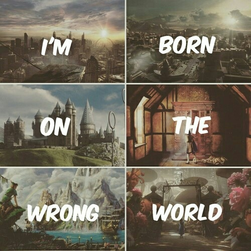 divergent, narnia, and harry potter image