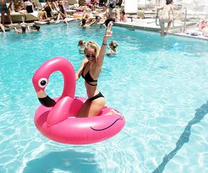 summer, pool, and bikini image