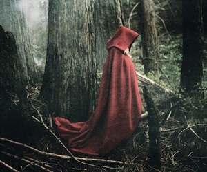 red, forest, and dark image