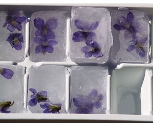 flowers, ice, and purple image