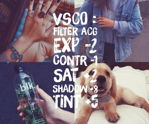 dog, effect, and photograph image