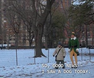 dog, elf, and funny image