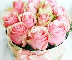 box, pink, and rose image