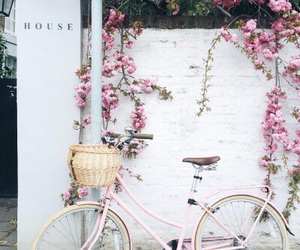bicycle, london, and pink image