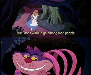 alice in wonderland, Cheshire cat, and alice image