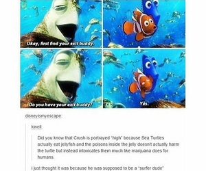 funny, finding nemo, and high image