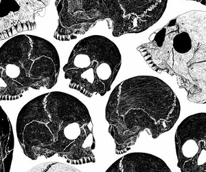 skull and background image