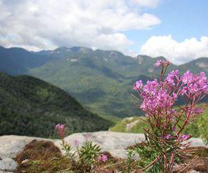 hiking, upstate new york, and mountains image