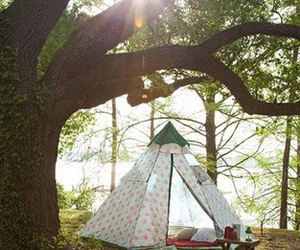 tree, tent, and nature image
