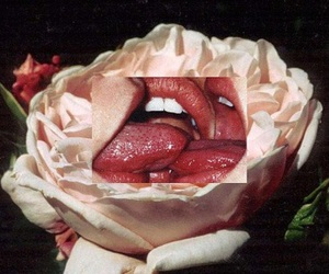 roses and toungue image