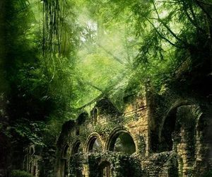 forest, Poland, and ruins image