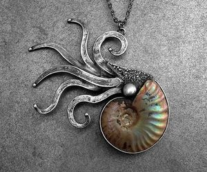 nautilus, necklace, and pendant image