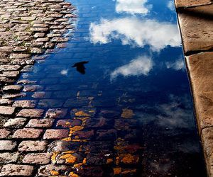 sky, water, and clouds image