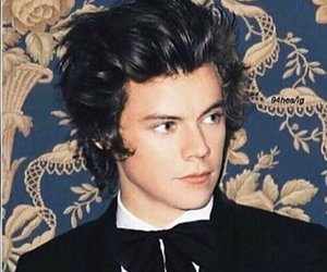 long hair, shorthair, and tux image