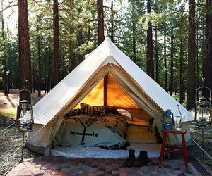 forest, nature, and tent image