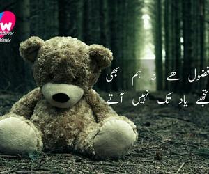 pakistani, urdu, and shairy image