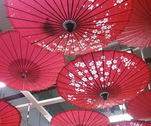 artistic, chinese, and roof image