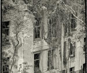 grey, places, and melancholia image